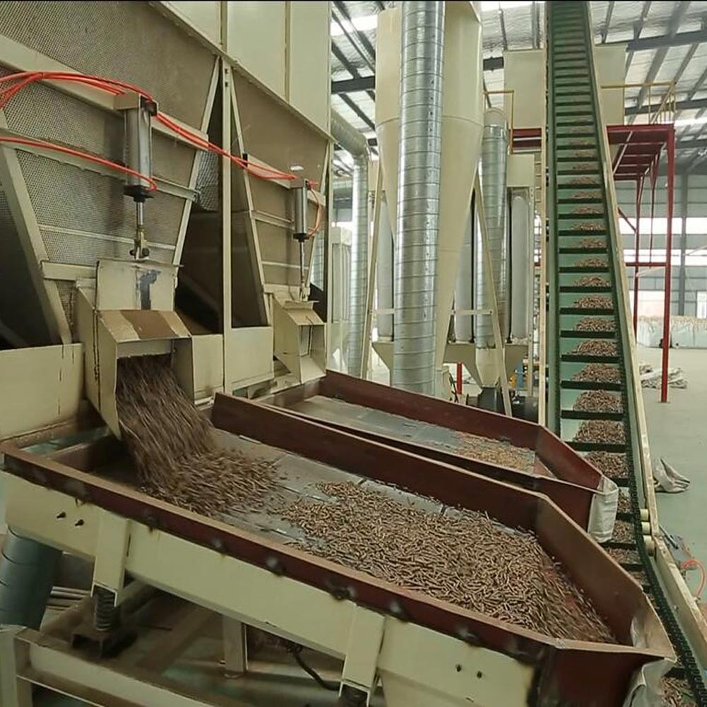 Biomass Wood Pellet Production Line with 1-20t/h