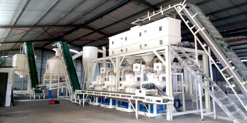 6 T/H wood pellet production line in Malaysia