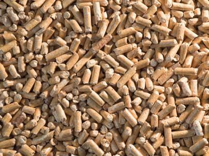 Properties of Biomass Pellets