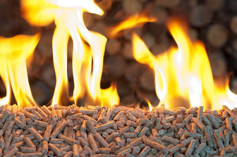 What is the calorific value of wood pellet related to?