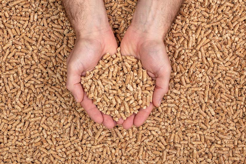 Japanese wood chip and wood pellet demand expected to grow