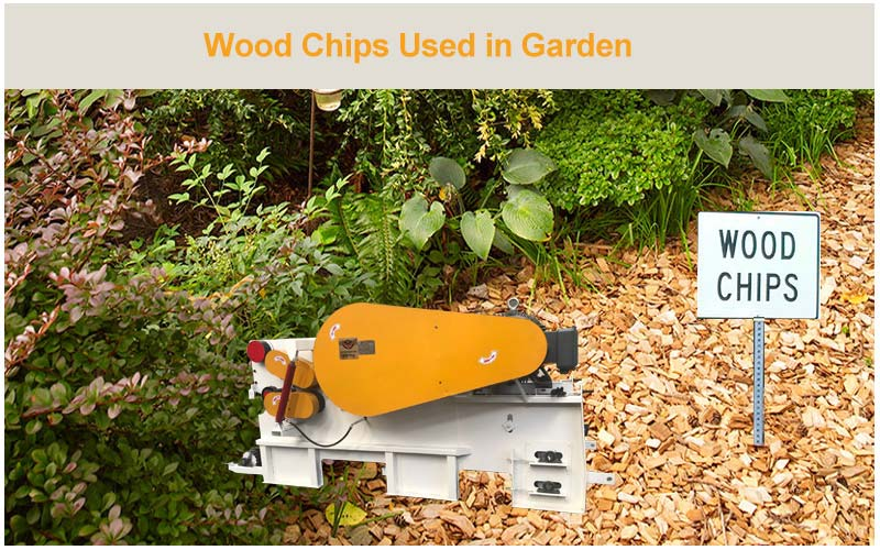 Why You Should Use Wood Chips in Garden