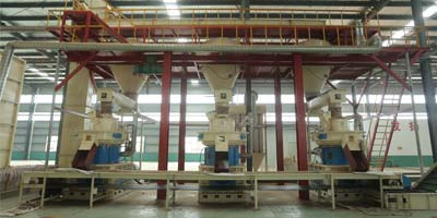 Biomass Wood Pellet Production Line with 1-20t/h(图6)