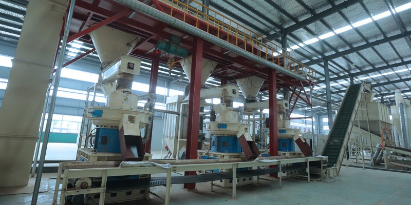 Annual output of 100,000 tons wood pellet line in Jiangsu (图1)